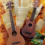 duo-guitare